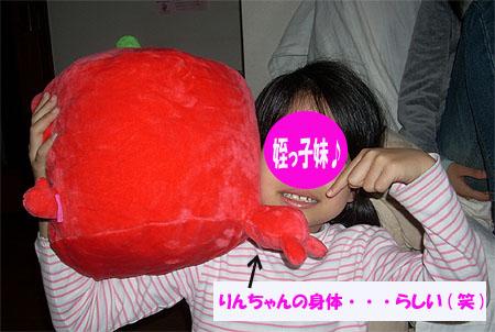 20071103りんちゃん胴体②