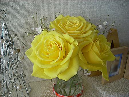 20071207黄色い薔薇①