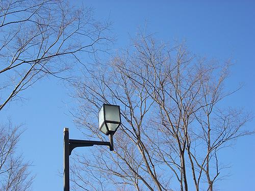 20080228外灯②