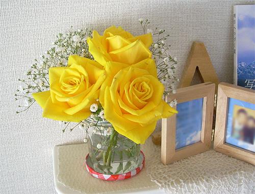 200803063月部屋花