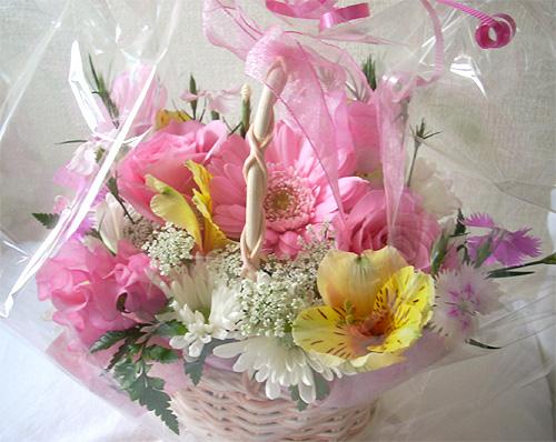 20080331誕生日花