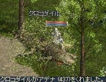 LinC35850.jpg