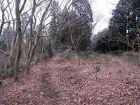20090211-8.jpg