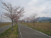 20090404-0.jpg