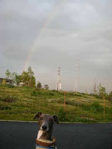 20090508-1