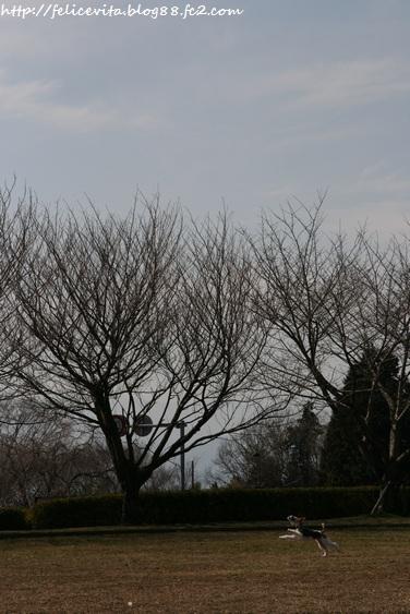空中散歩④
