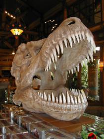 USJ2恐竜