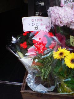 とびた2花