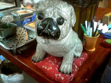 難波亭本店犬