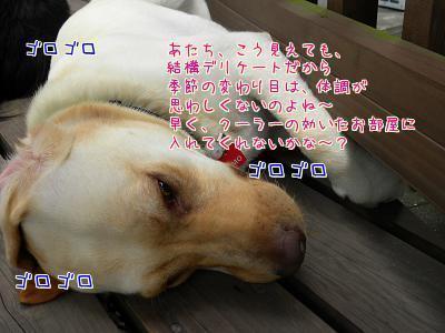 1sqC5Xa9.jpg