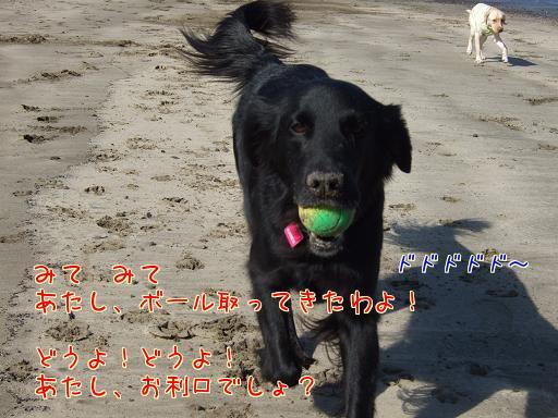 X7x7eyB3.jpg