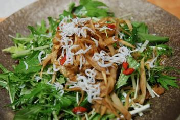 新ごぼうと水菜のサラダ ゆず胡椒ドレッシング