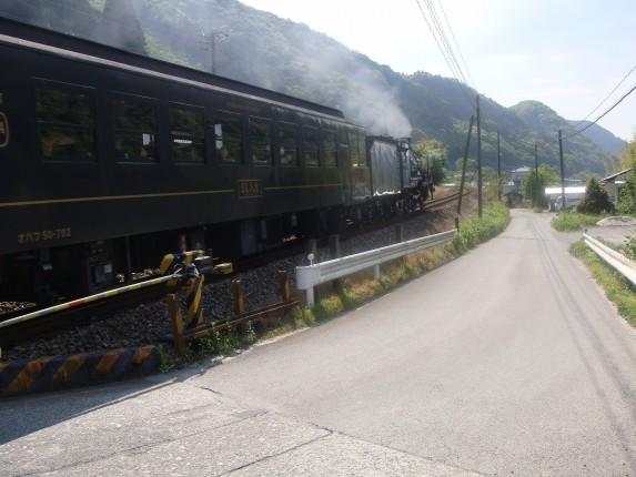 球磨川散歩5
