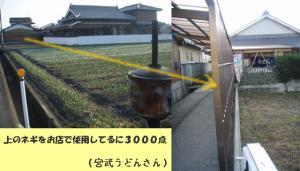 20090117宮武
