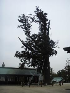 20090207吉備津彦神社5