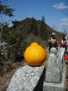 20090315佐木島・太平山3