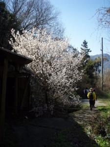 20090315佐木島・太平山10