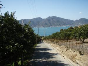 20090315佐木島・太平山9
