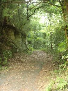 20090612ジャングルごっこ