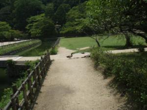 200907閑谷学校8