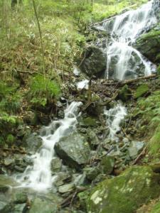 20080923笹ヶ峰3
