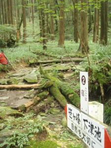 20080923笹ヶ峰4
