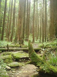 20080923笹ヶ峰-宿