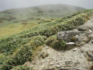 20080923笹ヶ峰9