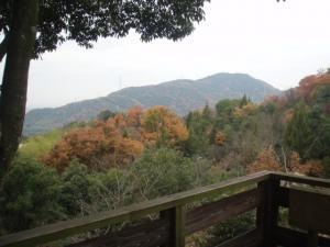 20081209景色