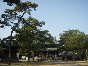 20081210善通寺2
