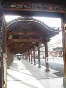 20081210善通寺9