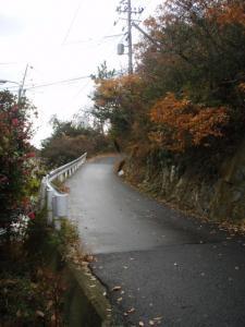 20081214楯越山3
