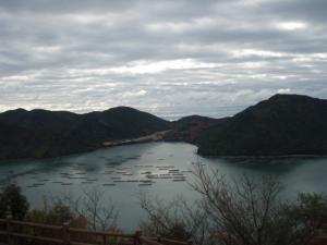 20081214楯越山7