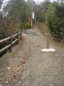 20081214楯越山4
