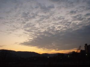 20081229京橋朝市4