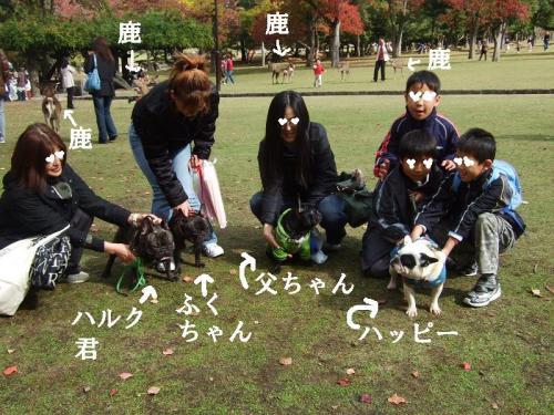 奈良公園で集まったよぉ(^^)
