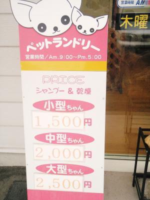 0000蟷エ00譛・0譌・_P1010113_convert_20090609215930