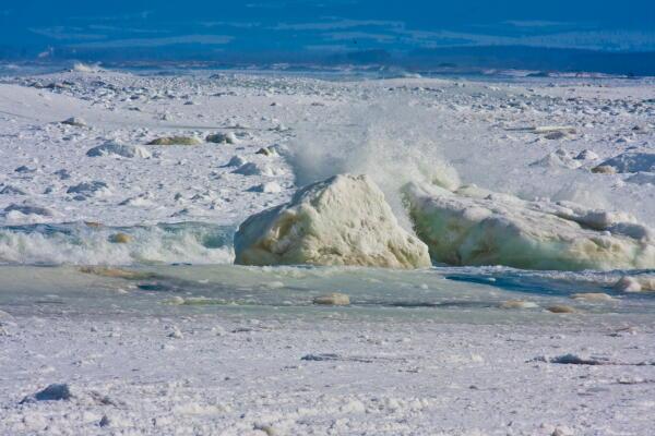 流氷を砕く波