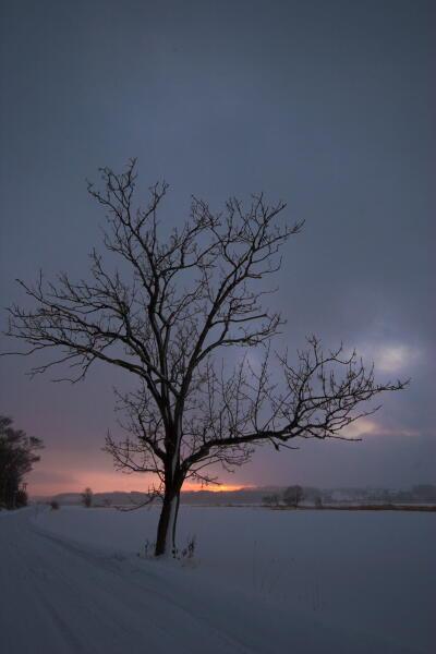 雪と雲と夕焼けと