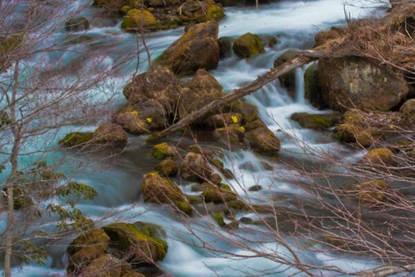 阿寒湖からの流れ