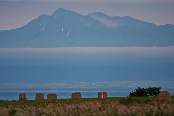 牧草ロールと斜里岳