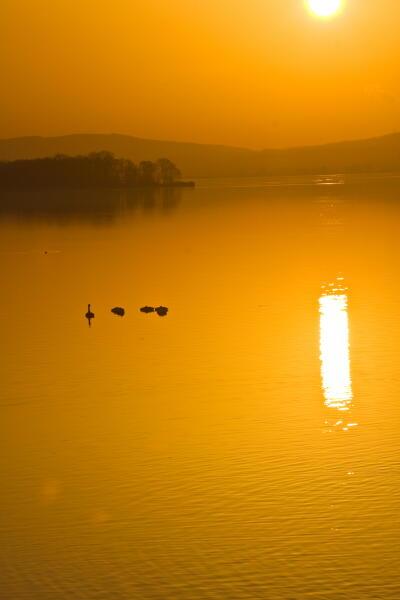オレンジ色の湖