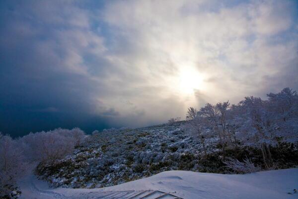 渦巻く雲と樹氷 (藻琴山にて)