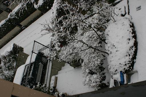 自宅2階からの雪景色
