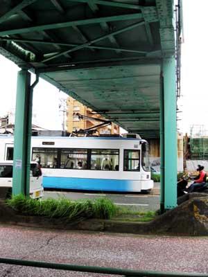 20090822Shinsui2429.jpg