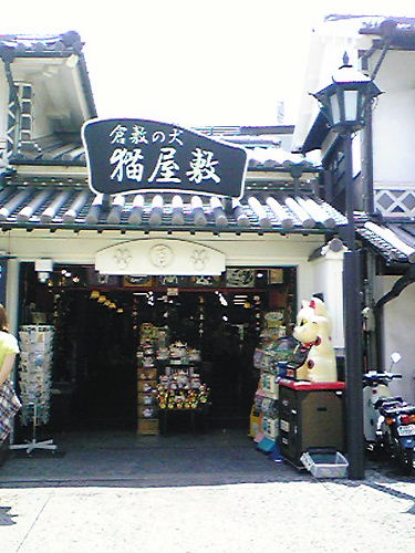 Image636[1]