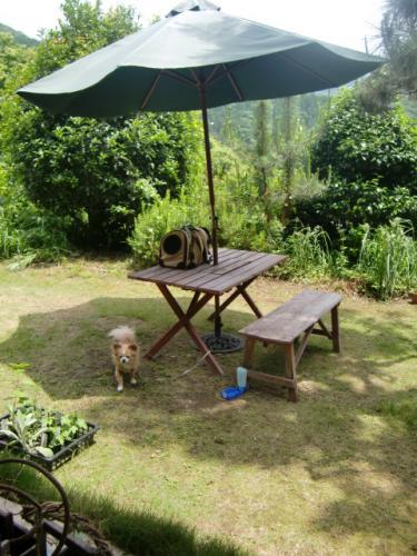 お庭で休憩