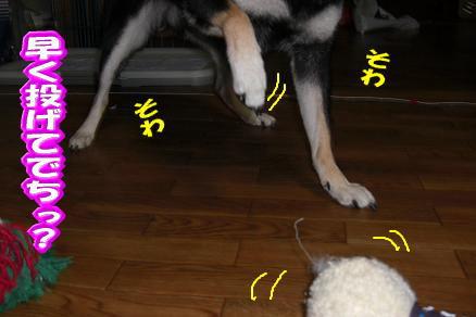 200902-5.jpg
