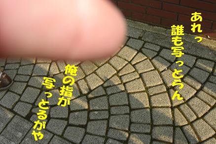 200917-7.jpg