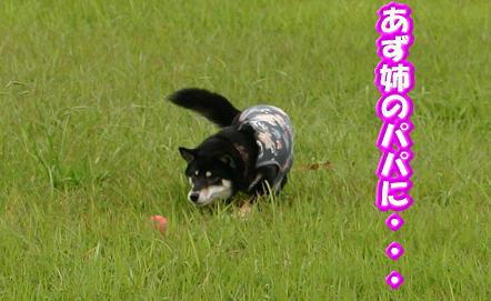 200929-2.jpg